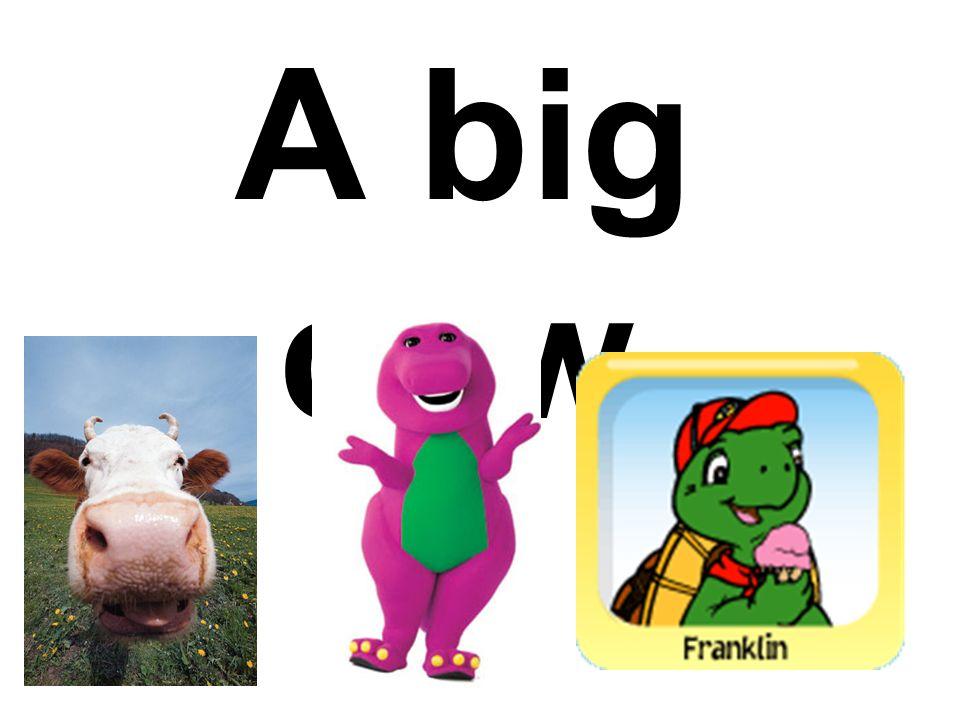 A big cow.