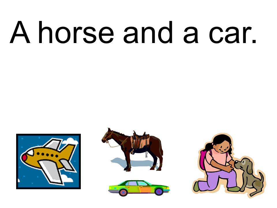 A horse and a car.