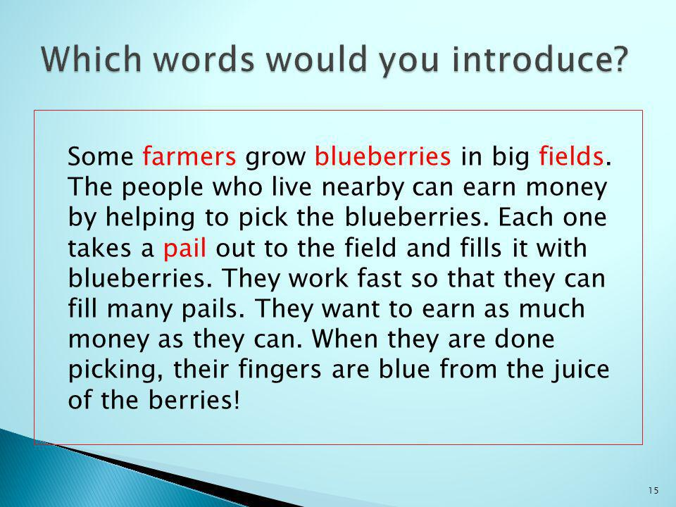 Some farmers grow blueberries in big fields.