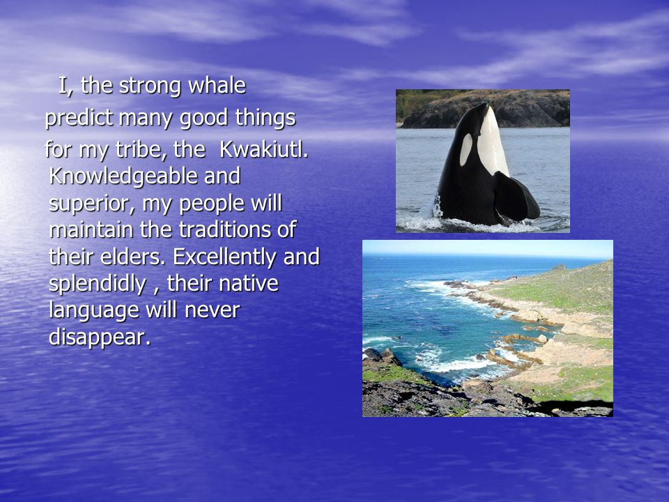 I, the strong whale I, the strong whale predict many good things predict many good things for my tribe, the Kwakiutl. Knowledgeable and superior, my p