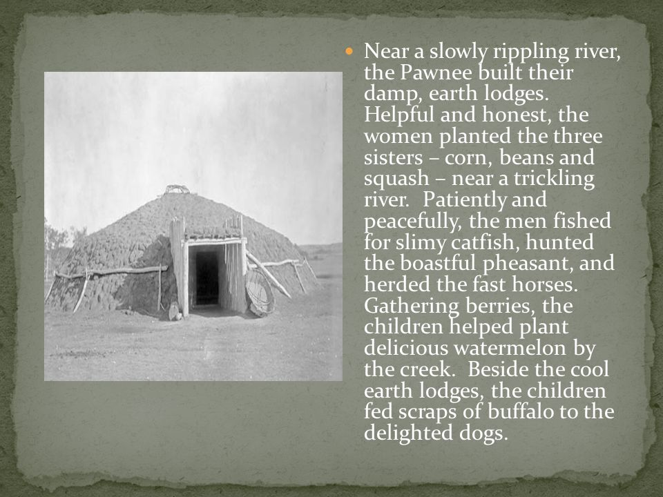 Near a slowly rippling river, the Pawnee built their damp, earth lodges. Helpful and honest, the women planted the three sisters – corn, beans and squ