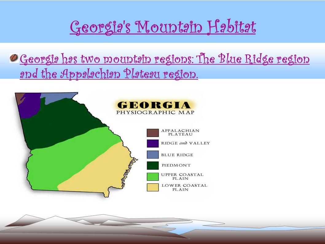 Georgia's Mountain Habitat Georgia has two mountain regions: The Blue Ridge region and the Appalachian Plateau region.
