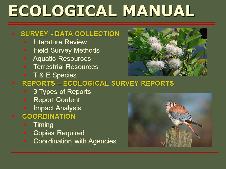SURVEY - DATA COLLECTION Literature Review Field Survey Methods Aquatic Resources Terrestrial Resources T & E Species REPORTS – ECOLOGICAL SURVEY REPORTS 3 Types of Reports Report Content Impact Analysis COORDINATION Timing Copies Required Coordination with Agencies ECOLOGICAL MANUAL