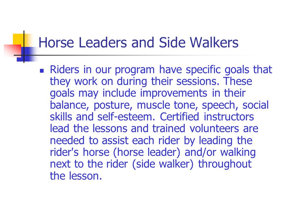 Horse Leaders and Side Walkers Riders in our program have specific goals that they work on during their sessions.