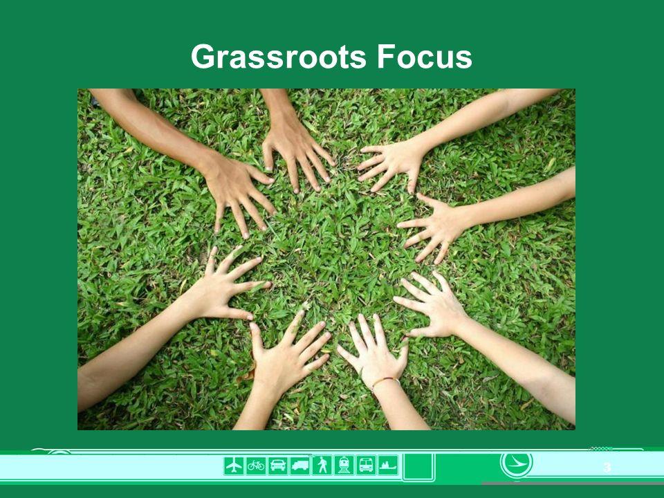 3 Grassroots Focus
