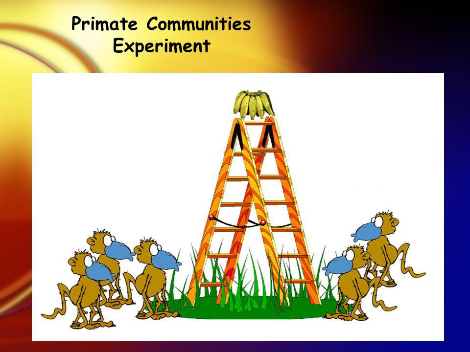 Primate Communities Experiment