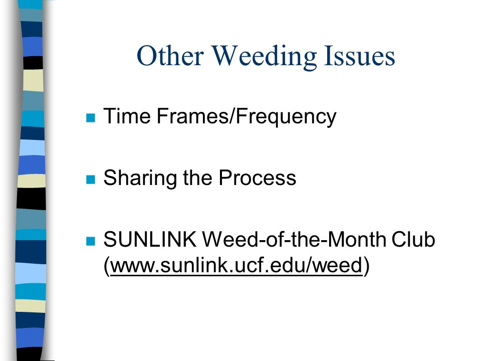 Other Weeding Issues n Time Frames/Frequency n Sharing the Process n SUNLINK Weed-of-the-Month Club (www.sunlink.ucf.edu/weed)