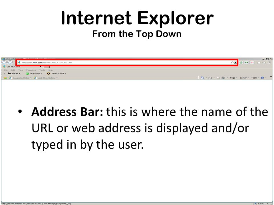 Internet Explorer From the Top Down Address Bar: this is where the name of the URL or web address is displayed and/or typed in by the user.