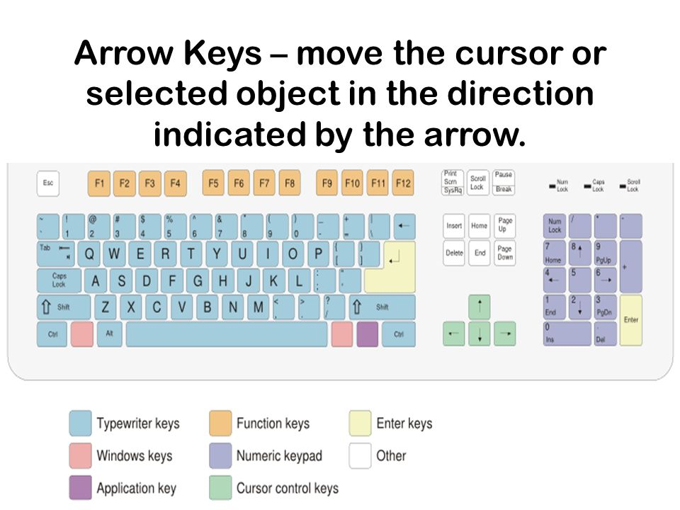 Arrow Keys – move the cursor or selected object in the direction indicated by the arrow.