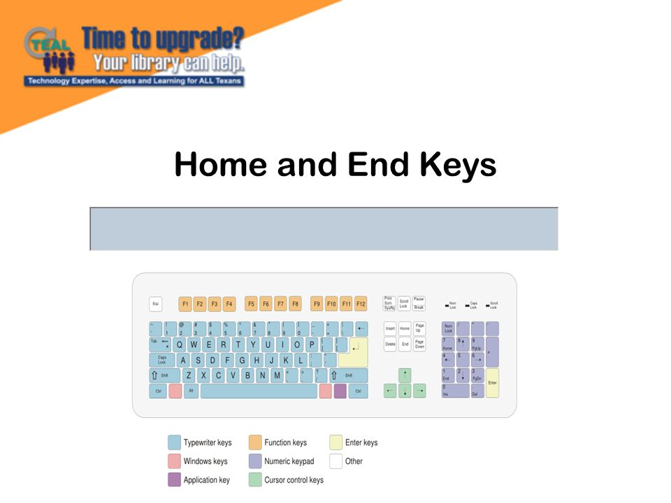Home and End Keys