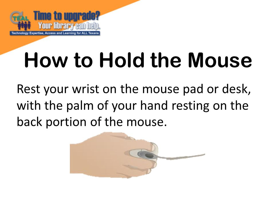How to Hold the Mouse Rest your wrist on the mouse pad or desk, with the palm of your hand resting on the back portion of the mouse.