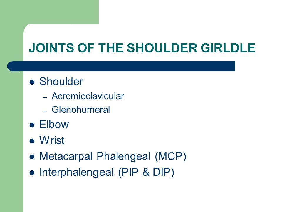 JOINTS OF THE SHOULDER GIRLDLE Shoulder – Acromioclavicular – Glenohumeral Elbow Wrist Metacarpal Phalengeal (MCP) Interphalengeal (PIP & DIP)
