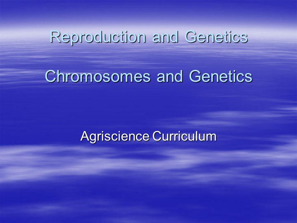 Unit 4, Lesson 10 Chromosomes and Gentics PP2