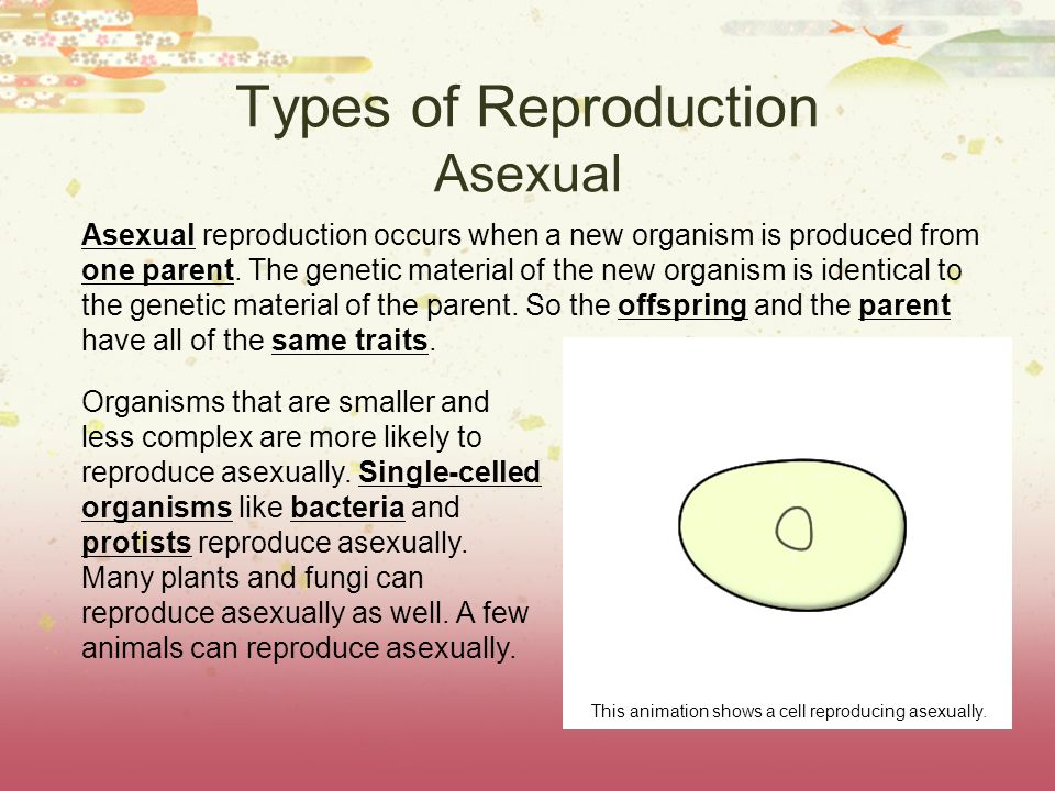 Types of Reproduction Asexual Asexual reproduction occurs when a new organism is produced from one parent. The genetic material of the new organism is