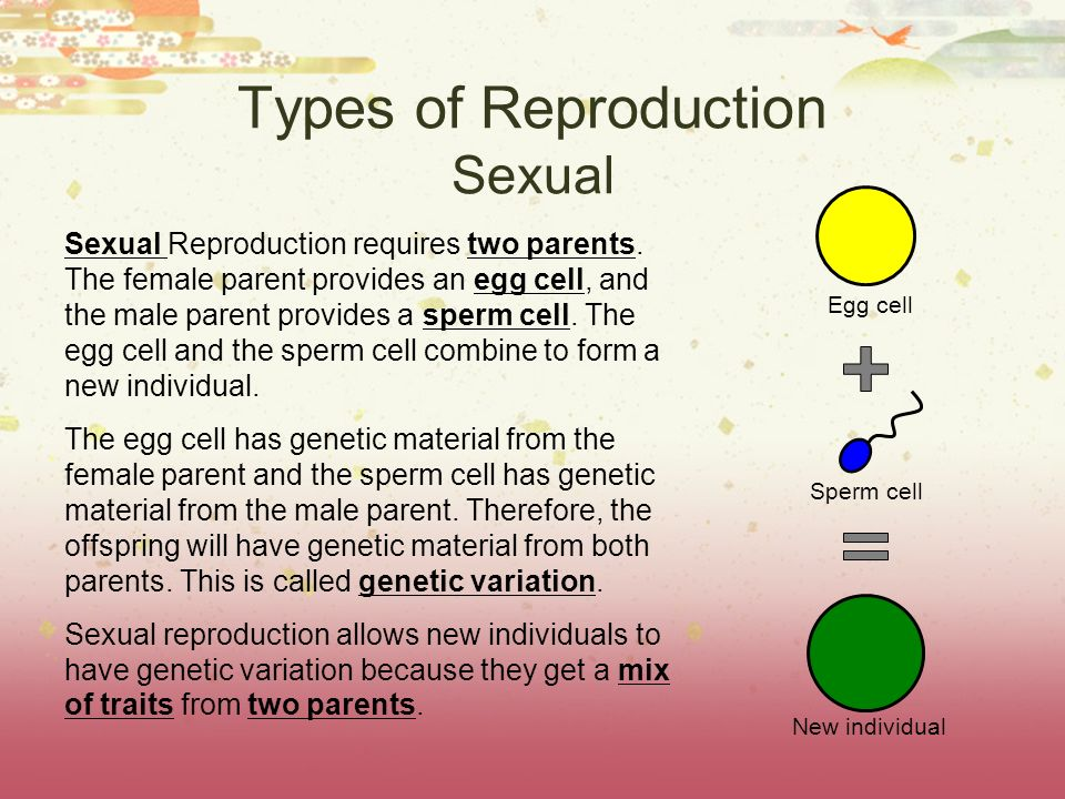 Types of Reproduction Sexual Sexual Reproduction requires two parents. The female parent provides an egg cell, and the male parent provides a sperm ce