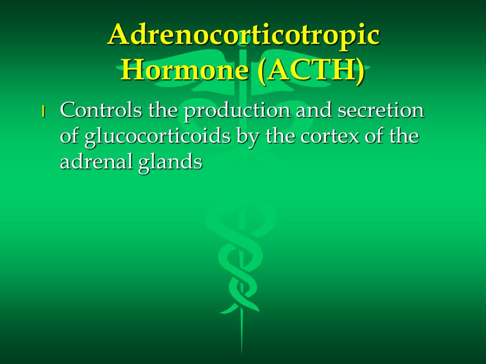 Adrenocorticotropic Hormone (ACTH) l Controls the production and secretion of glucocorticoids by the cortex of the adrenal glands