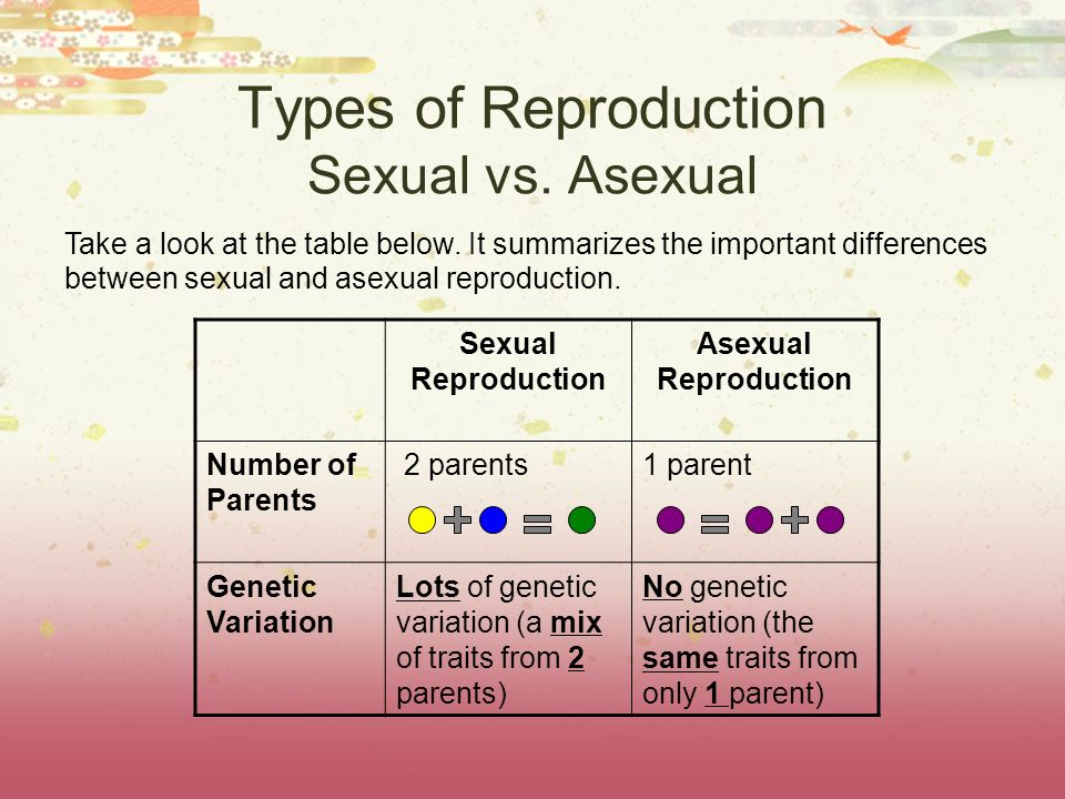 Types of Reproduction Sexual vs. Asexual Take a look at the table below. It summarizes the important differences between sexual and asexual reproducti