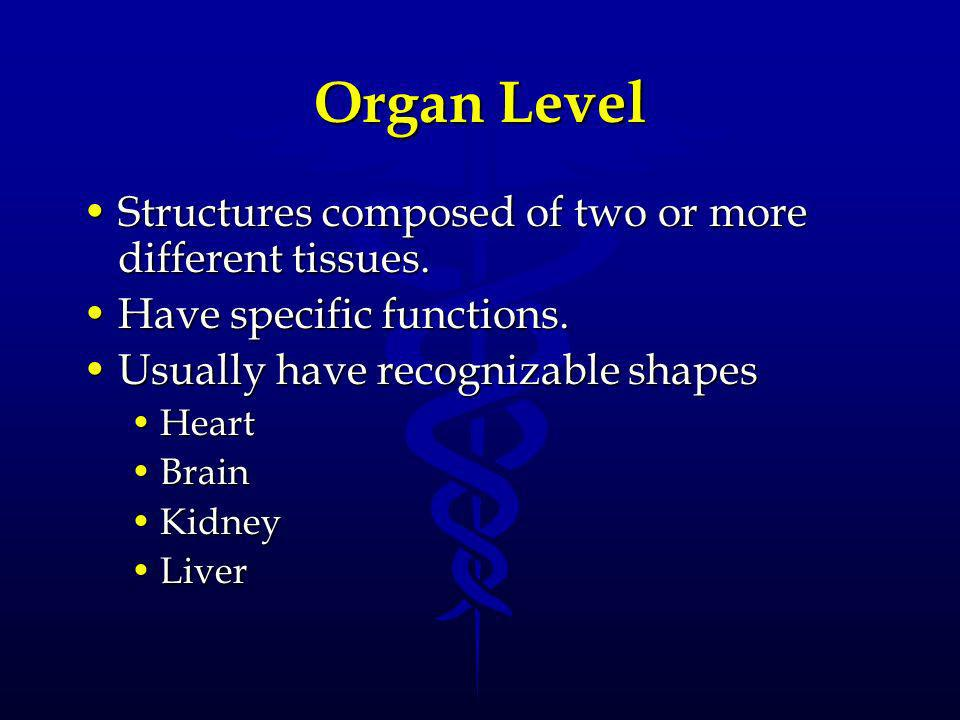 System Level An association of organs that have a common function.An association of organs that have a common function.