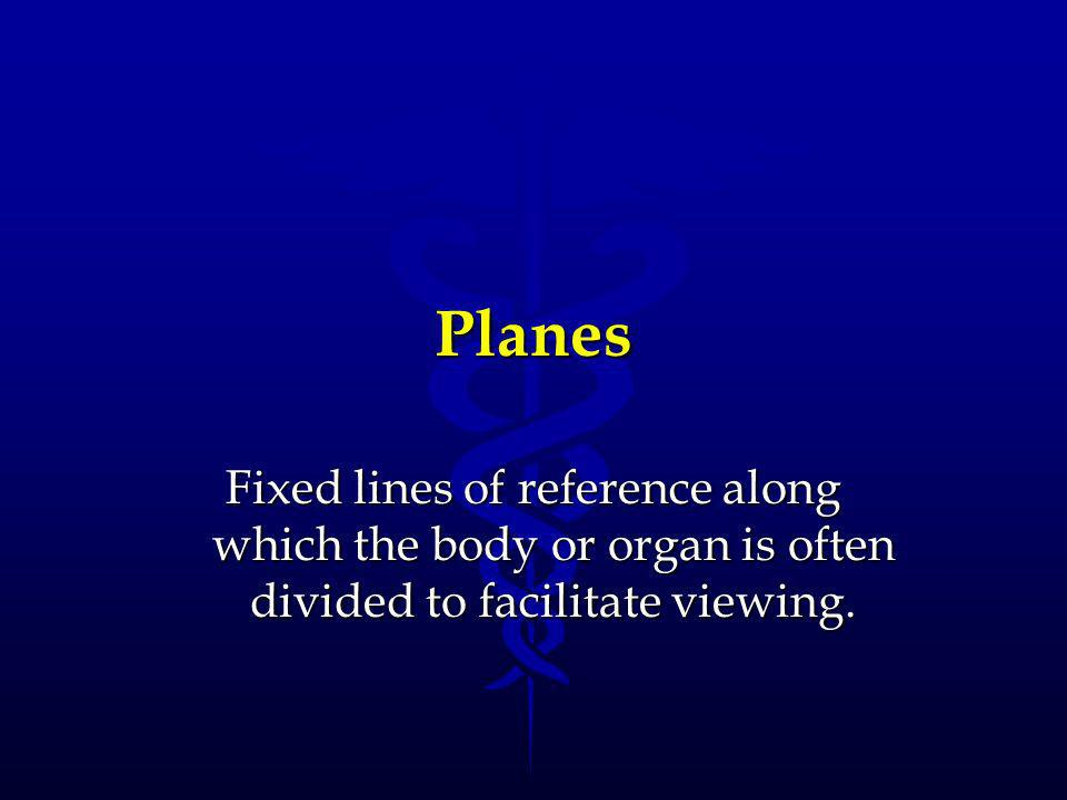 Planes Fixed lines of reference along which the body or organ is often divided to facilitate viewing.