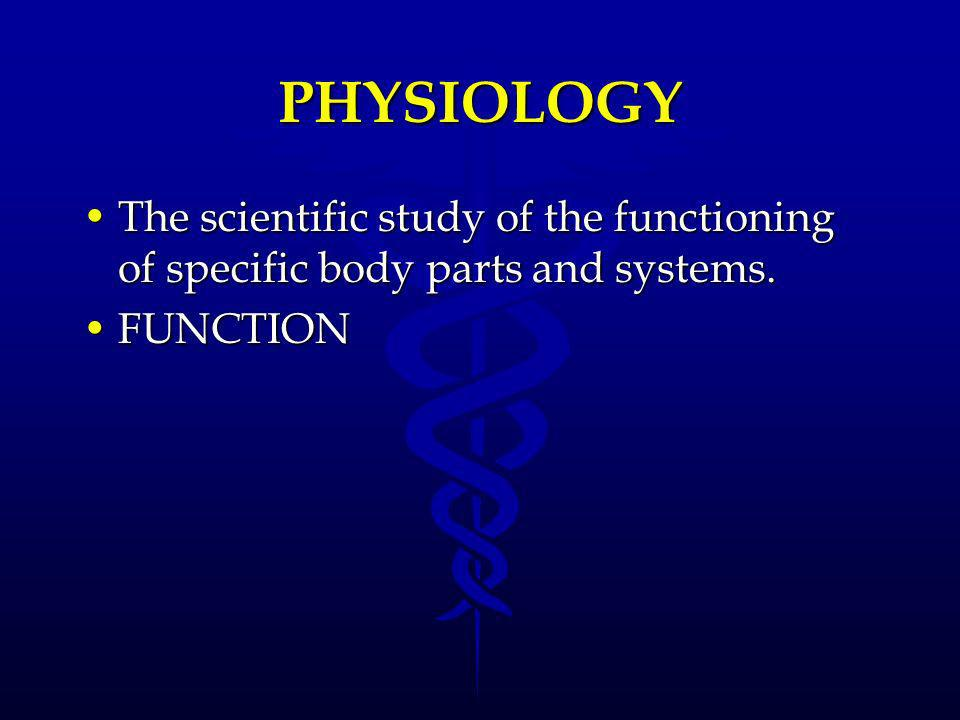 The study of function is? A.) anatomy B.) physiology C.) science D.) catabolism