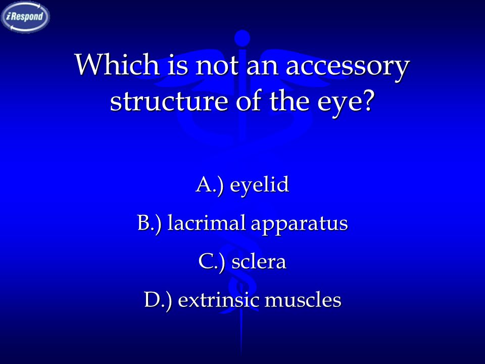 Which is not an accessory structure of the eye? A.) eyelid B.) lacrimal apparatus C.) sclera D.) extrinsic muscles