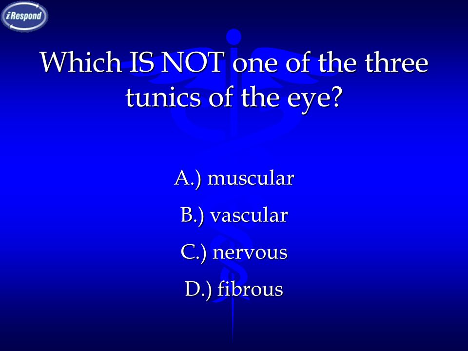 Which IS NOT one of the three tunics of the eye? A.) muscular B.) vascular C.) nervous D.) fibrous