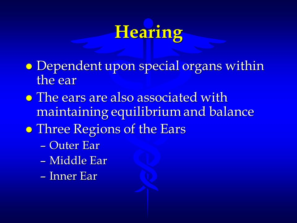 Hearing l Dependent upon special organs within the ear l The ears are also associated with maintaining equilibrium and balance l Three Regions of the