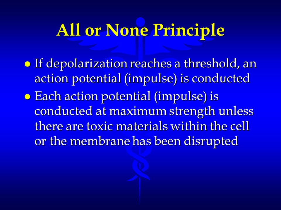 All or None Principle l If depolarization reaches a threshold, an action potential (impulse) is conducted l Each action potential (impulse) is conduct