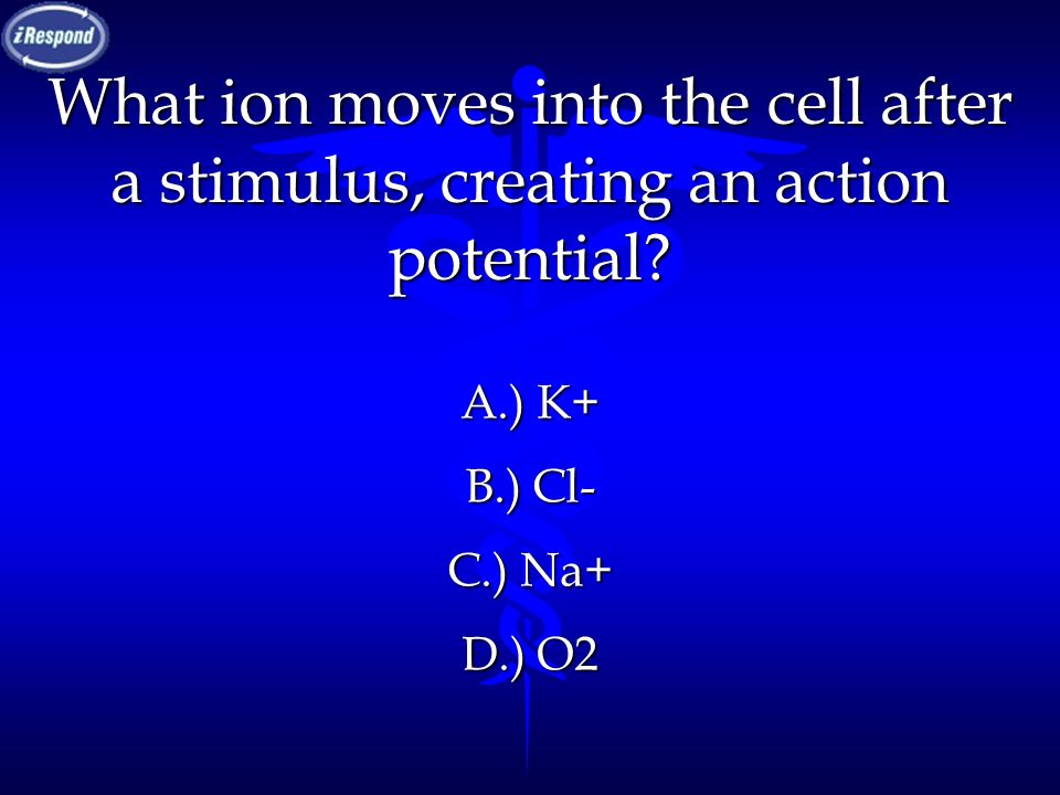 What ion moves into the cell after a stimulus, creating an action potential? A.) K+ B.) Cl- C.) Na+ D.) O2