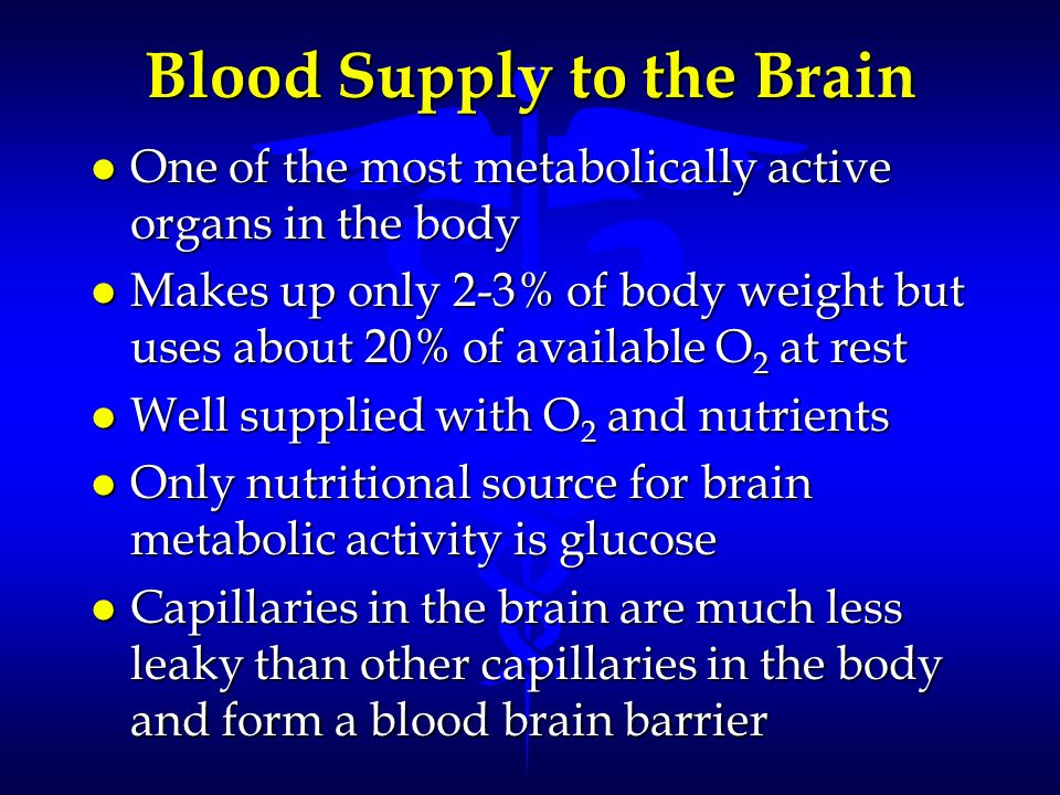 Blood Supply to the Brain l One of the most metabolically active organs in the body l Makes up only 2-3% of body weight but uses about 20% of availabl