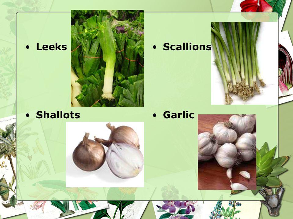 Onions Bulb onions Garlic Leeks Scallions Shallots