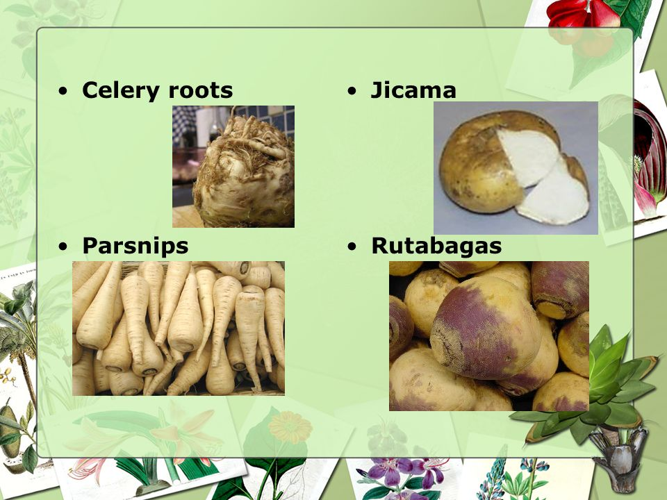 Roots and Tubers Beets Carrots Celery roots Jicama Parsnips Radishes Rutabagas Turnips Potatoes