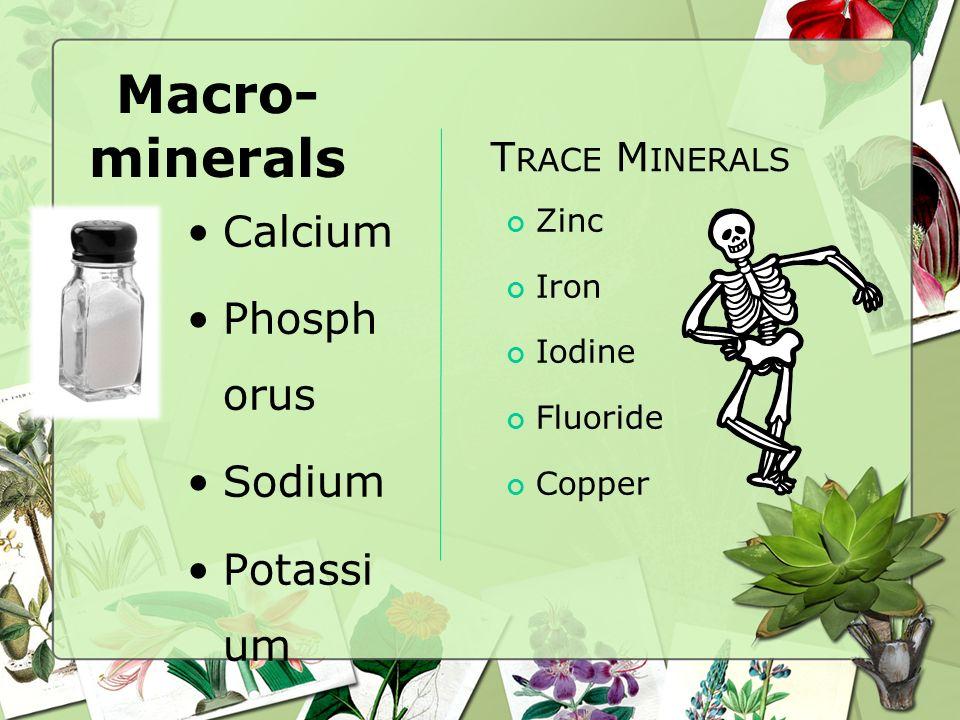 Things that destroy vitamins found in vegetables Heat Water Air
