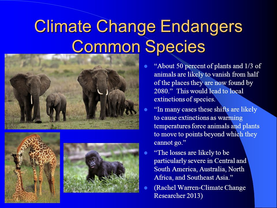 Gigantic Species Decline Possible By 2050, rising temperatures exacerbated by human-induced belches of carbon dioxide and other greenhouse gases could send more then a million of Earths land- dwelling plants and animals down the road to extinction.