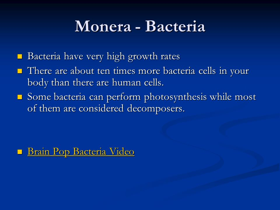 Monera - Bacteria Bacteria are the most abundant organism on the earth. Bacteria are the most abundant organism on the earth. Bacteria can reproduce v