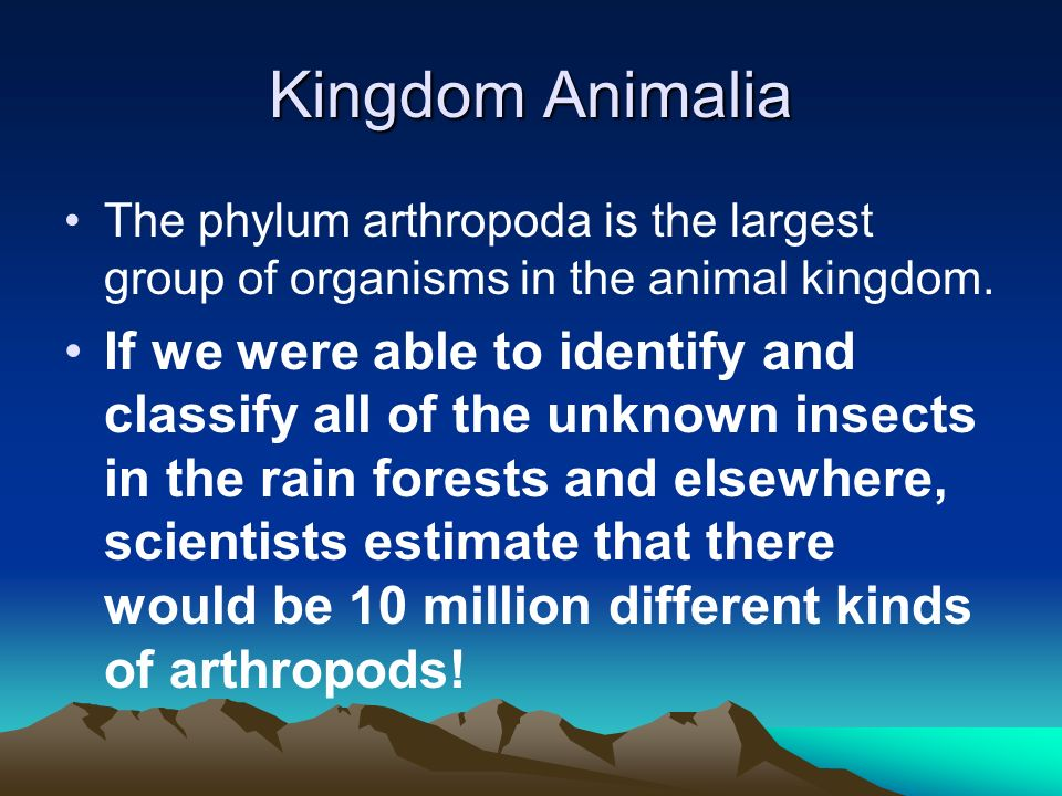 Kingdom Animalia The animal Kingdom contains the following different groups of animals: –Amphibians-Echinoderms –Arthropods-Mammals –Birds-Mollusks –F