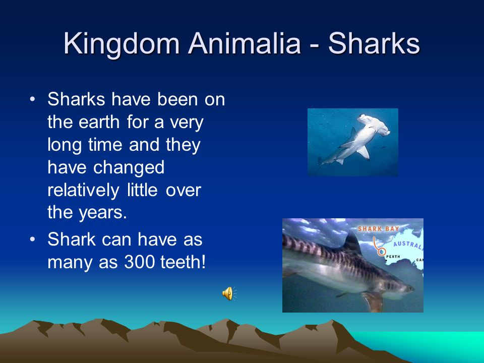 Kingdom Animalia - Reptiles Reptiles are animals that have scales, breathe air and lay eggs.