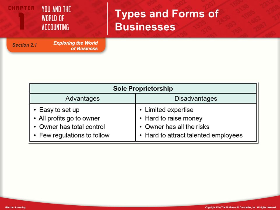 Copyright © by The McGraw-Hill Companies, Inc. All rights reserved.Glencoe Accounting Exploring the World of Business Types and Forms of Businesses Se