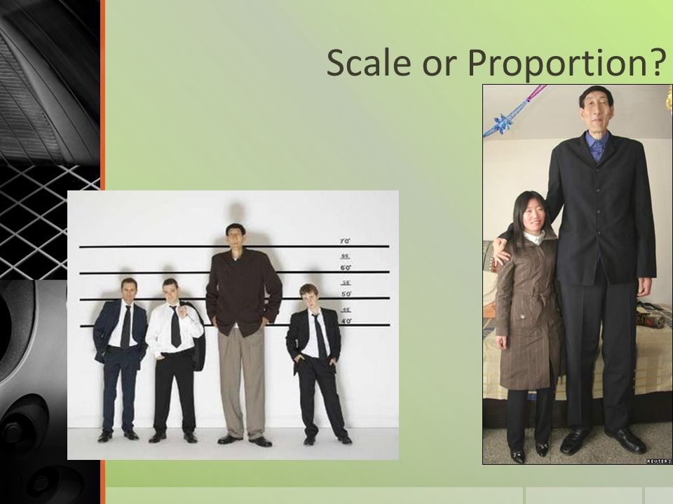 Scale or Proportion?