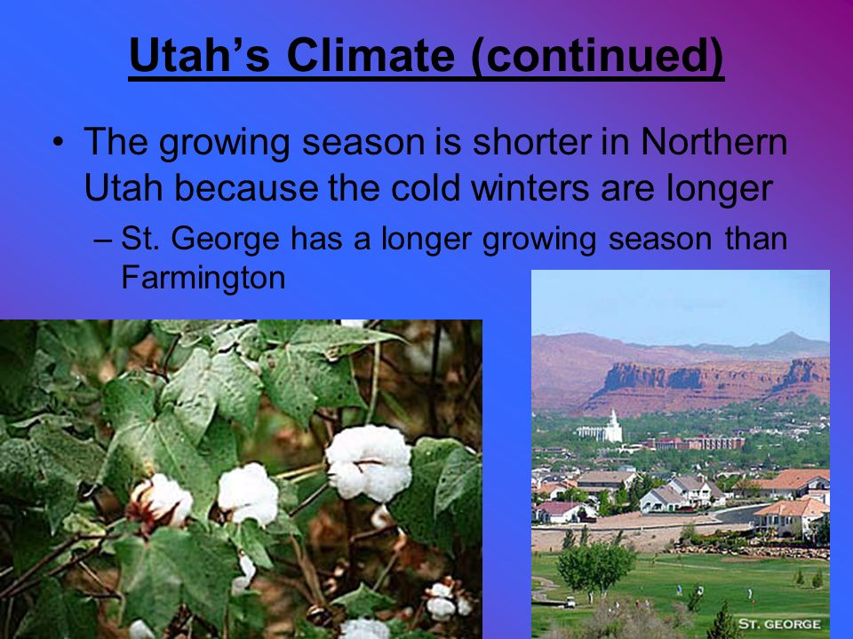 Utahs Climate (continued) The growing season is shorter in Northern Utah because the cold winters are longer –St. George has a longer growing season t