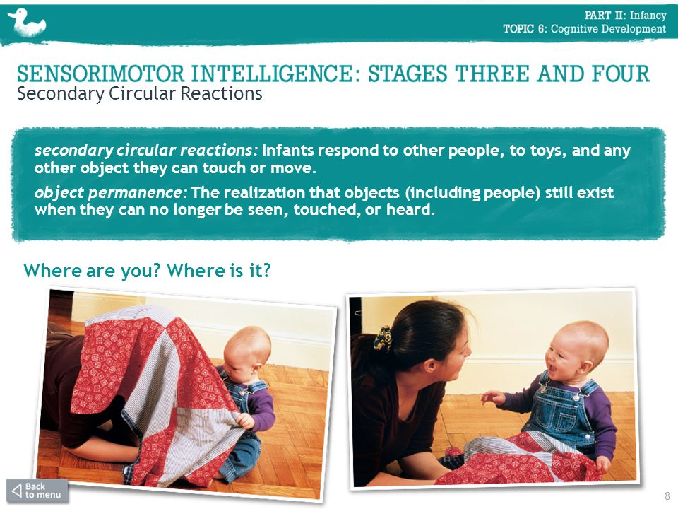 Secondary Circular Reactions secondary circular reactions: Infants respond to other people, to toys, and any other object they can touch or move. obje