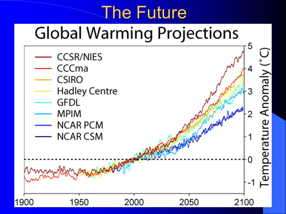 Hottest Years on Record 1998 2005 2003 2002 2004 2006 2007 2001 1997 1995 (National Weather Services, 2009)