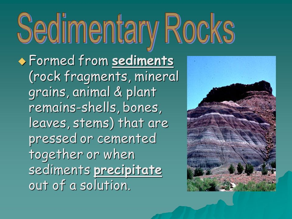 Formed from sediments (rock fragments, mineral grains, animal & plant remains-shells, bones, leaves, stems) that are pressed or cemented together or when sediments precipitate out of a solution.