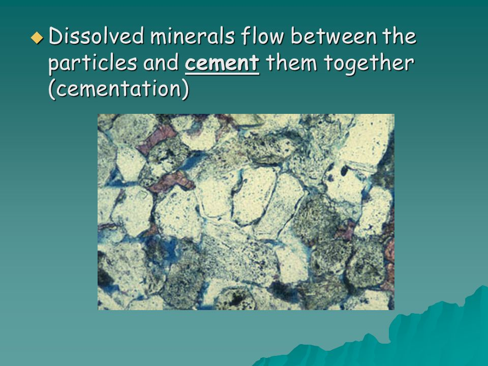 Dissolved minerals flow between the particles and cement them together (cementation) Dissolved minerals flow between the particles and cement them together (cementation)