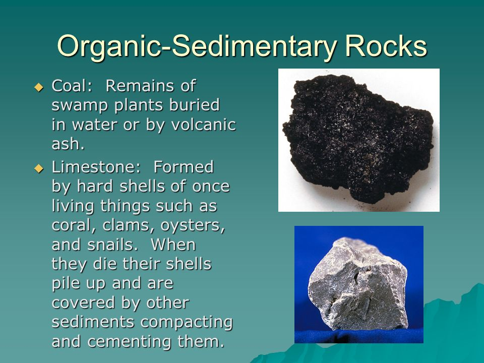 Organic-Sedimentary Rocks Coal: Remains of swamp plants buried in water or by volcanic ash. Coal: Remains of swamp plants buried in water or by volcan