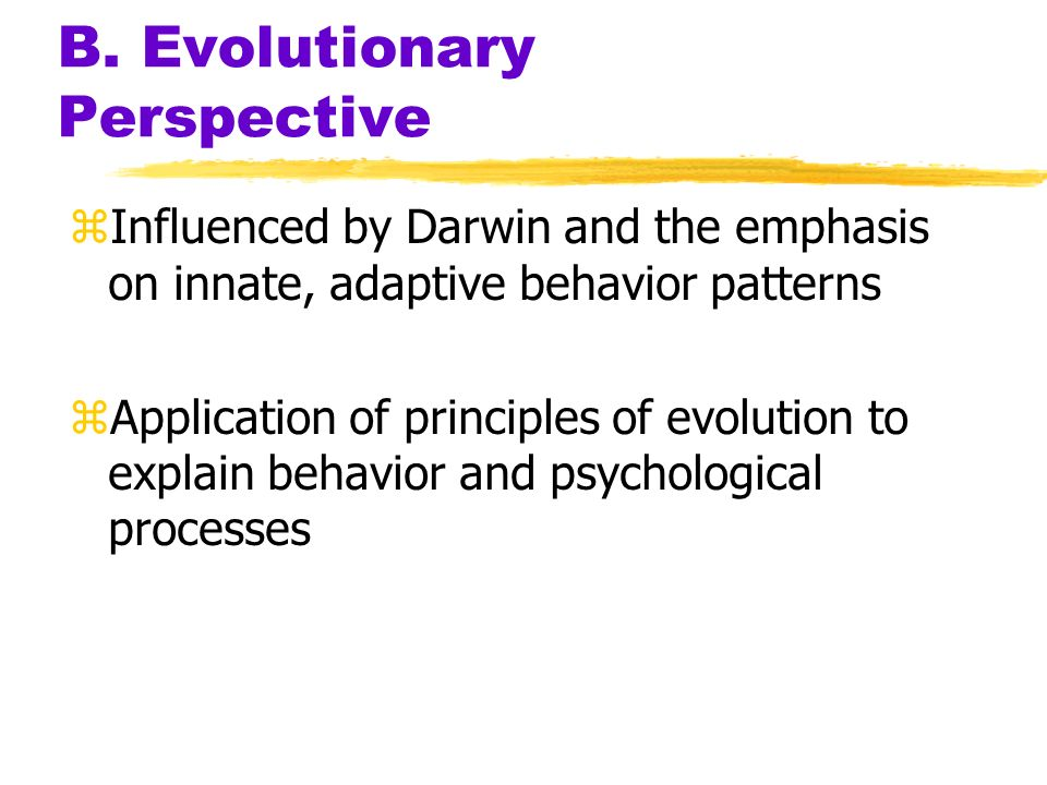 B. Evolutionary Perspective zInfluenced by Darwin and the emphasis on innate, adaptive behavior patterns zApplication of principles of evolution to ex