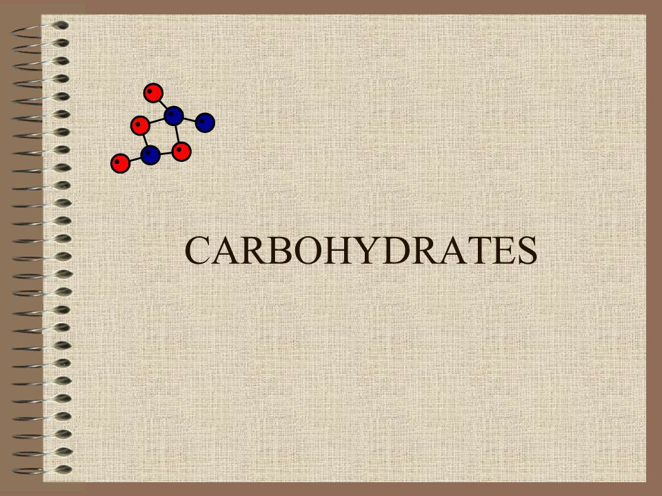 Why are carbohydrates important?