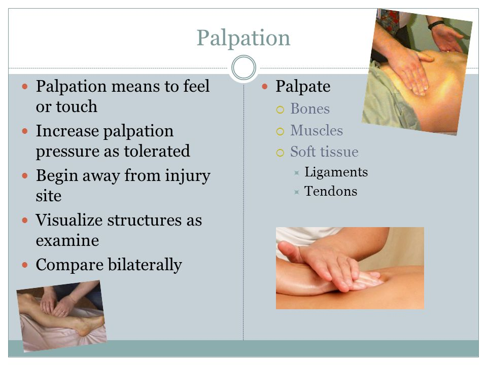 Palpation Palpation means to feel or touch Increase palpation pressure as tolerated Begin away from injury site Visualize structures as examine Compar