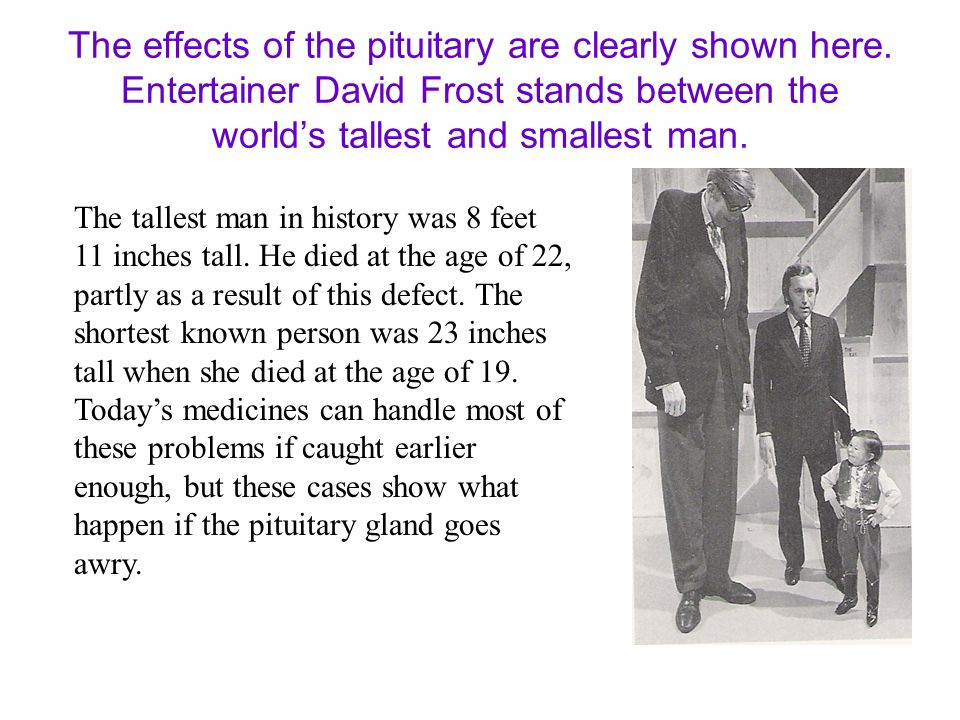 The effects of the pituitary are clearly shown here. Entertainer David Frost stands between the worlds tallest and smallest man. The tallest man in hi