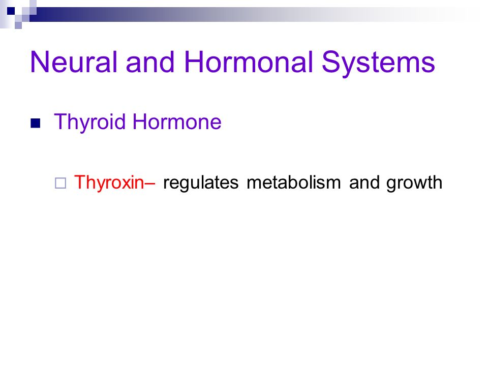 Neural and Hormonal Systems Thyroid Hormone Thyroxin– regulates metabolism and growth